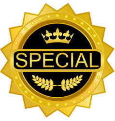 Special gold icon vector