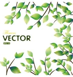 spring leaves frame vector image