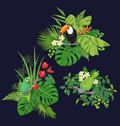 green parrot and toucan on tree branch vector image vector image