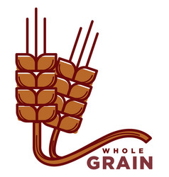 whole grain product logotype with ripe wheat ears vector image vector image