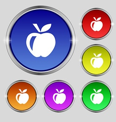 Apple icon sign Round symbol on bright colourful vector