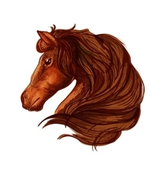 Brown horse head with wavy mane portrait vector image