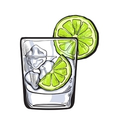 Glass of gin vodka soda water with ice and lime vector