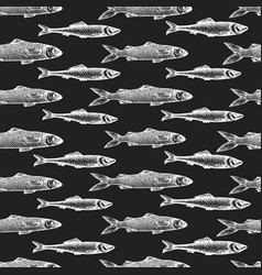 hand drawn fish seamless pattern mullet on chalk vector image