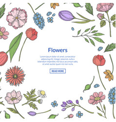 hand drawn flowers background with place vector image