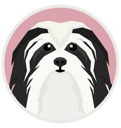 Havanese dog round frame vector