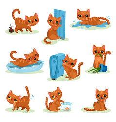 naughty kitten in different situations vector image