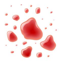 red wine splash bloody spots vector image