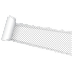 Seamless ripped of paper on a transparent vector