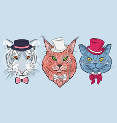 set cat hipster vector image