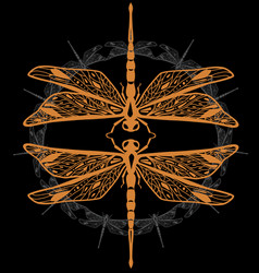 Two decorative dragonflies vector