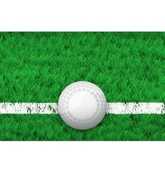 White line and hockey ball on Sport grass field vector