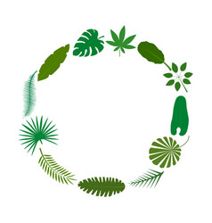 tropical palm leaves green silhouettes banner card vector image