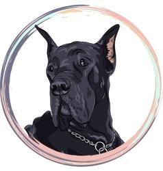 sketch domestic dog black Great Dane breed vector image vector image