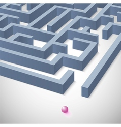 Maze concept for your business presentation vector image