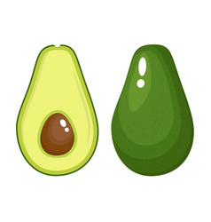 avocado food icon vector image