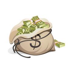 bag money packing in bundles bank notes vector image