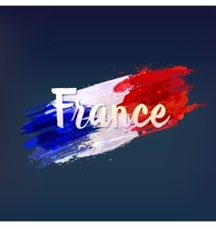 French national flag Euro 2016 vector