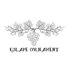 Grapes floral ornament vector
