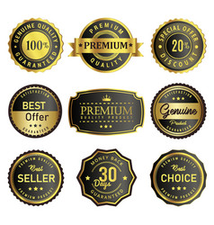 set of premium product labels vector image