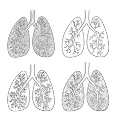 set of sketch lungs isolated on white vector image