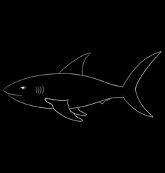 shark sketch white on blackboard vector image
