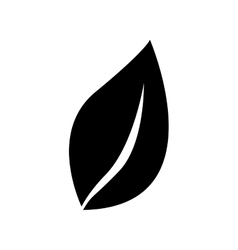 simple leaf icon image vector image