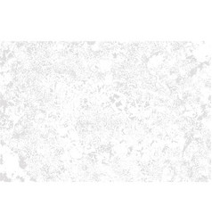 white plaster on grey background vector image
