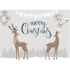 deer christmas vector image vector image