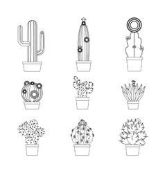 Cactus thin line icon set vector image vector image