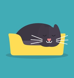 Cat is sleeping2 vector image vector image