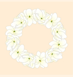 arabian jasmine wreath vector image