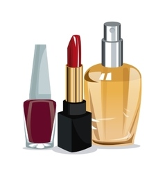 beauty cosmetics for wo vector image