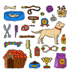 Cartoon dog accessory grooming canine animal pet vector