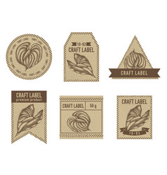 Craft labels with anthurium vector