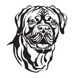 Decorative portrait of dog dogue de bordeaux vector