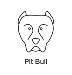 Pit bull linear icon vector