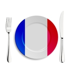 Plate with flag of France vector image