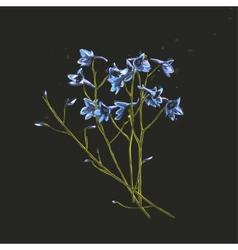 Romantic Wild Flowers Bunch on Dark vector image