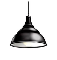 Black Lamp vector image vector image