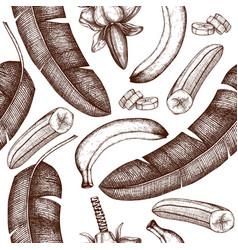 banana hand drawn background banana flower fruits vector image