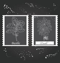 basilic collection-02 vector image