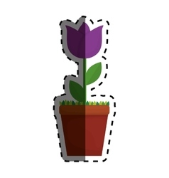 Beautiful flower plant vector image