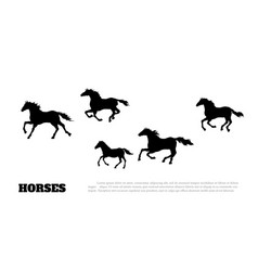 black silhouette of running horses vector image