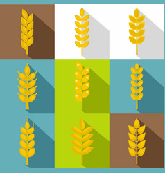 cereal grain icon set flat style vector image