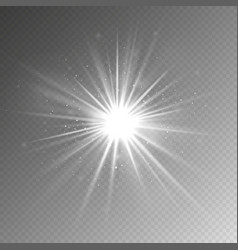 light effect glow light star shining vector image