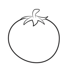 Tomato outline for colouring book isolated on vector
