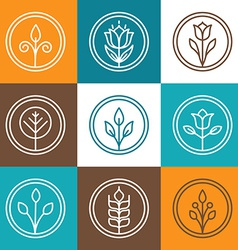 Set of nature badges vector image vector image