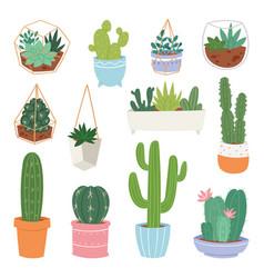 cactus cartoon botanical cacti potted cute vector image
