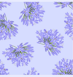 Blue purple agapanthus on light purple background vector